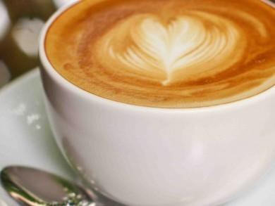 latte lovers